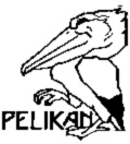 link to more information for Lenka Pelikan and Co, CGA